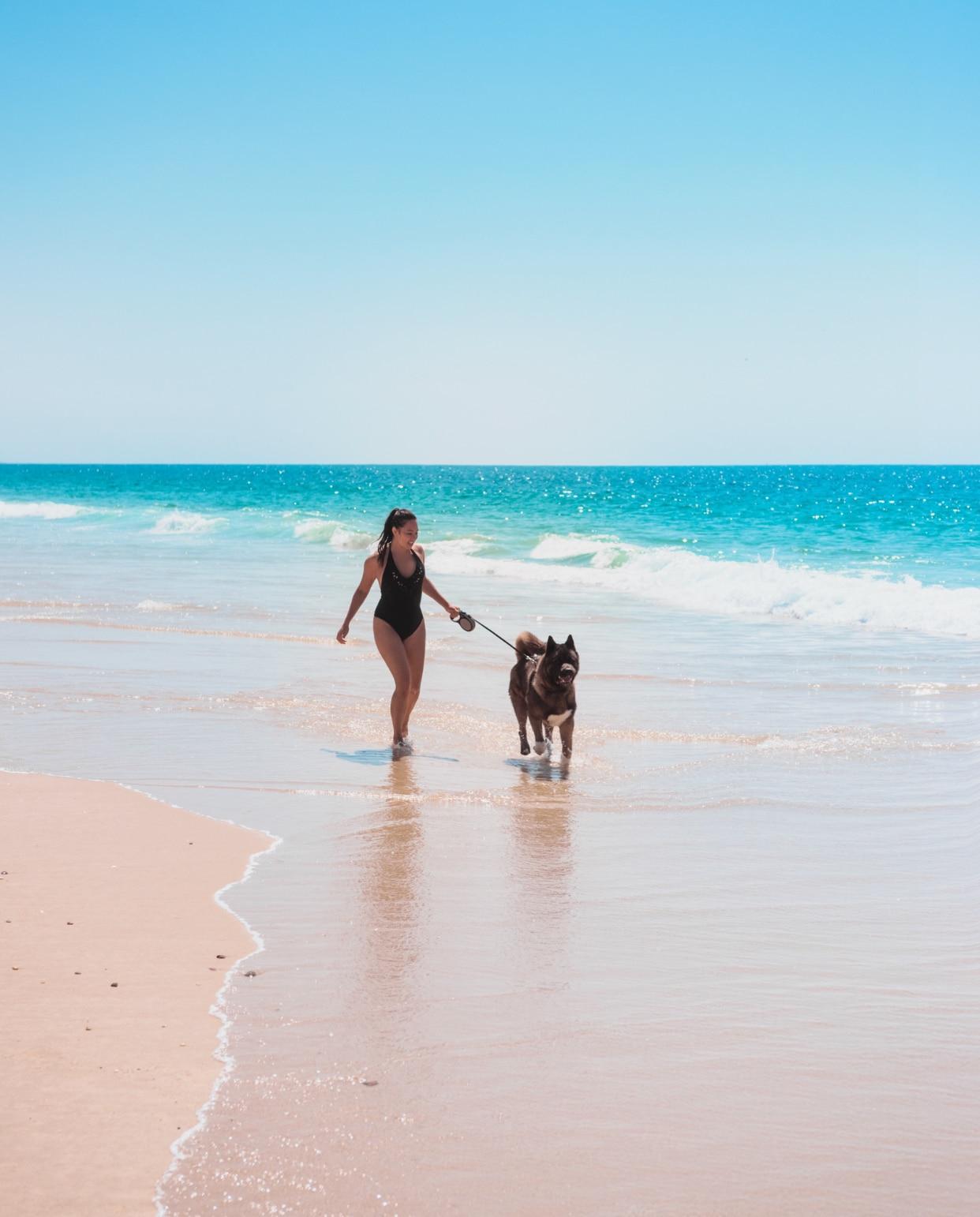 Les meilleurs lieux de promenade et spots de baignade à découvrir avec son chien en Gironde